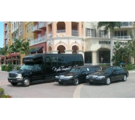 Naples Transportation vehicles
