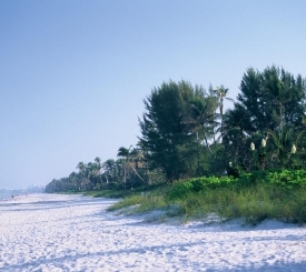 There are over 30 miles of soft, sandy beaches abound along Florida's Paradise Coast.  Photo by: Naples, Marco Island, Everglades CVB