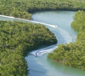 10,000 Island Guided Waverunner Eco Tours