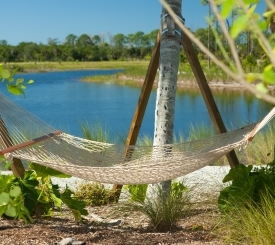 Hammock in the Caribbean Garden overlooking West Lake