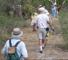 Trail Hike