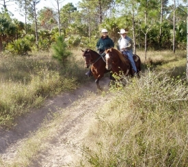 Riders explore the 22-mile equestrian trail on Picayune State Forest.