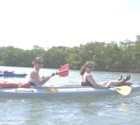GAEA Guides - Guided Kayak Nature Tours