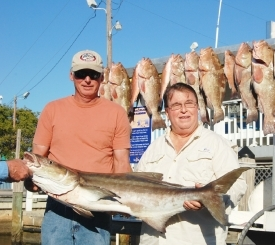 Naples Deep Sea Fishing Charters