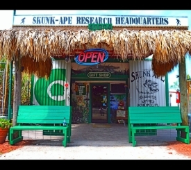 Skunk Ape Headquarters
