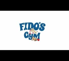 Fido's Gym