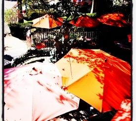 Dine Under a Colorful Umbrella