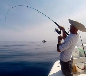 Unreel Sportsfishing