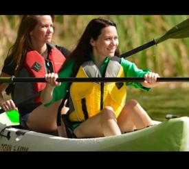 Naples - Marco Island Kayak Rentals