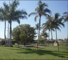 Canine Cove Dog Park