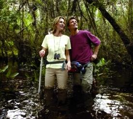 Fakahatchee Strand Preserve State Park Swamp Walks