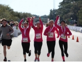 26.2 With Donna: The National Marathon to Fight Breast Cancer
