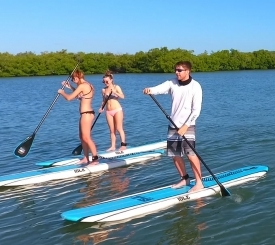 Paddleboard Rentals and Tours on Marco Island, Paddle Marco!