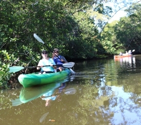 The Conservancy offers the only guided kayak tours along the Gordon River.