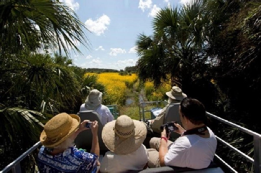 Swamp Buggy Tour